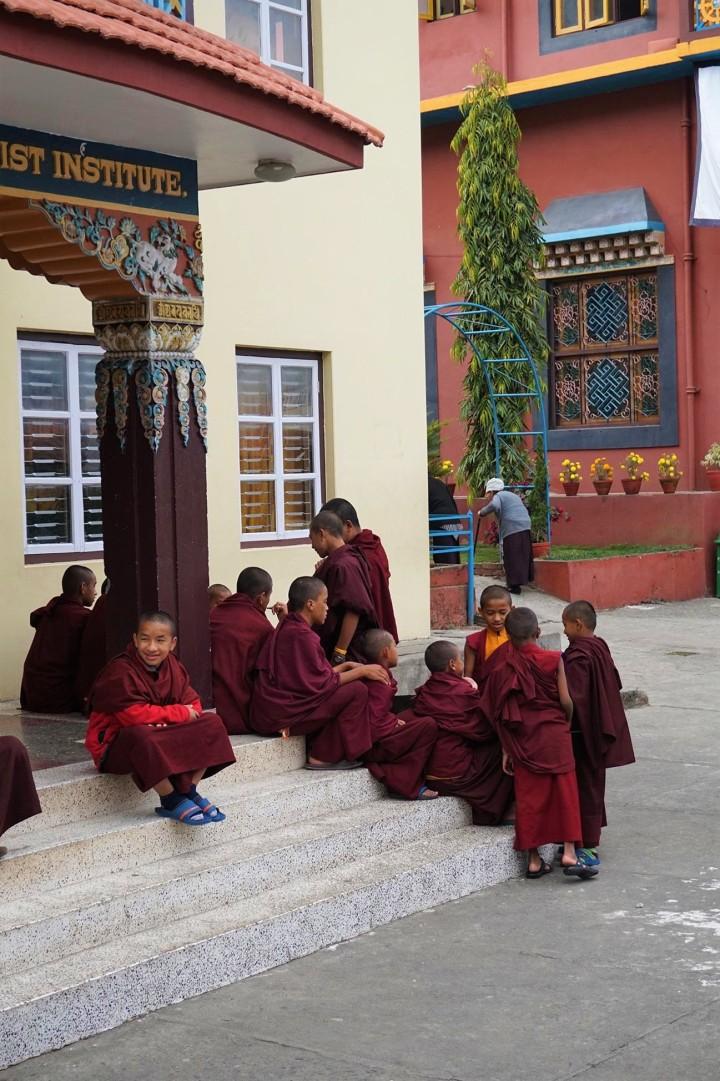 monks-tibetan-monastery-pokhara-nepal