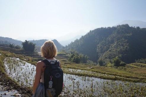 riziere-sapa-vietnam