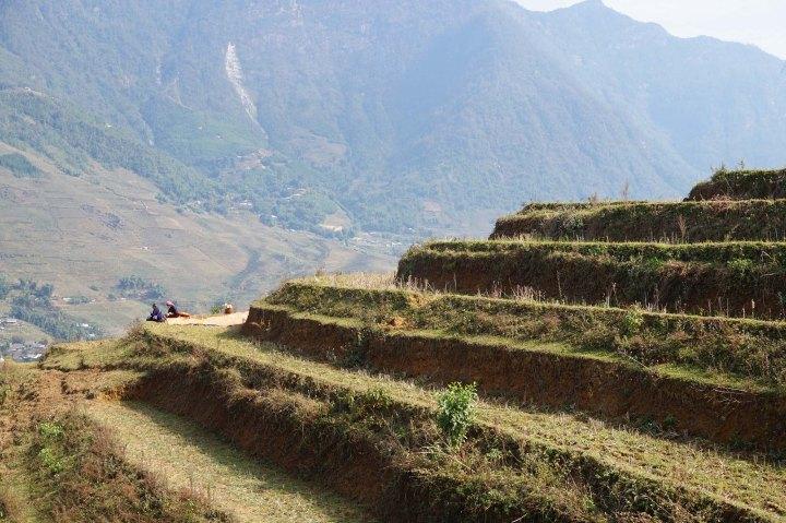 sapa-landscape-vietnam