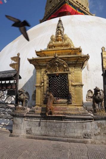 Swayambhunath, monkey temple, katmandou, nepal