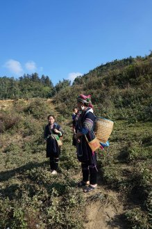 women-sapa-trek