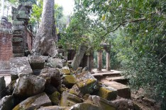cambodge-angkor-temples-siem-reap-18