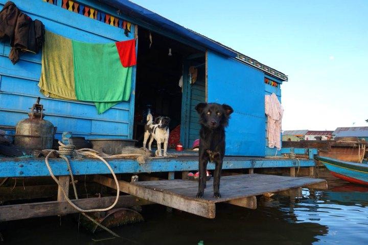 cambodge-floating-village-krakor-kampong-luong-26