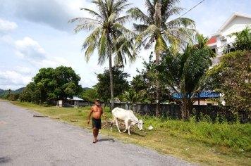 cambodge-kampot-kep-18