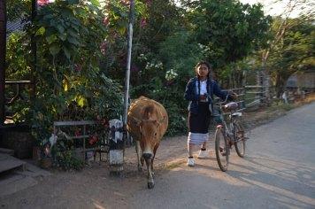 laos-day-2-thakhek-loop-34