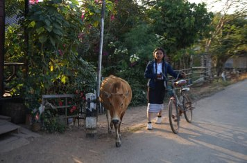 laos-day-2-thakhek-loop-34