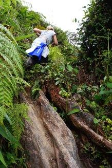 asie-malaisie-cameron-highlands-tanah-rata-08