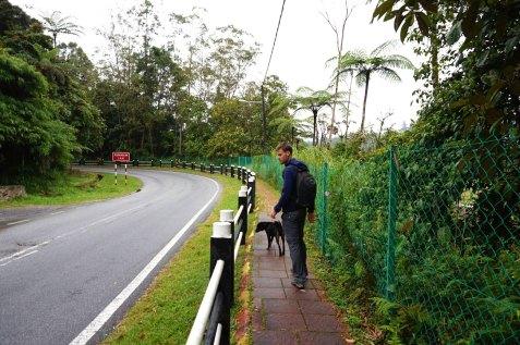asie-malaisie-cameron-highlands-tanah-rata-104