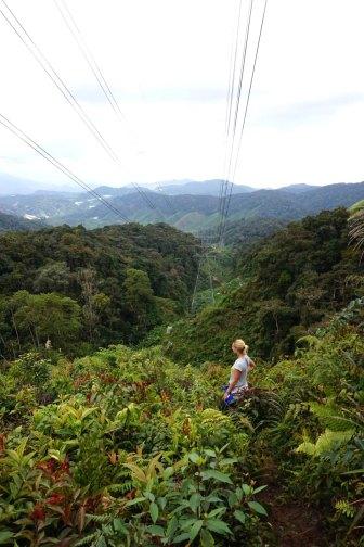 asie-malaisie-cameron-highlands-tanah-rata-12