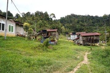 asie-malaisie-cameron-highlands-tanah-rata-33