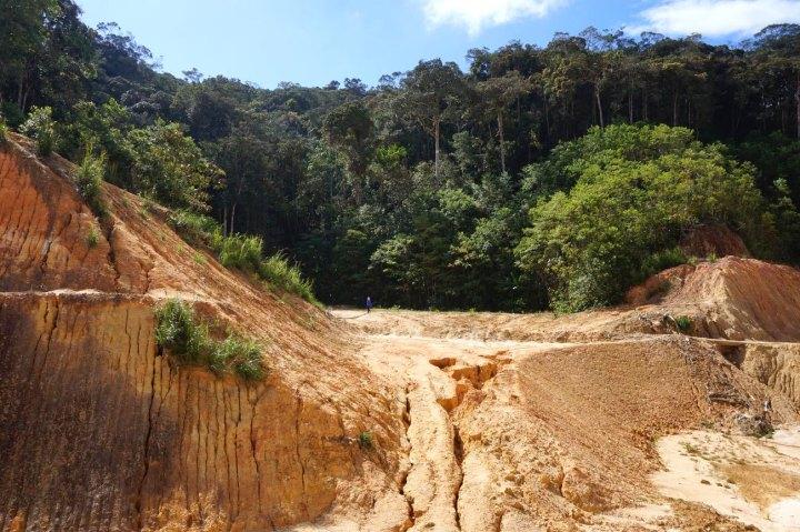 asie-malaisie-cameron-highlands-tanah-rata-75.jpg