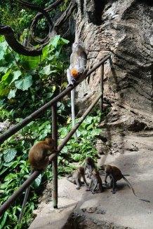 asie-malaisie-kuala-lumpur-32
