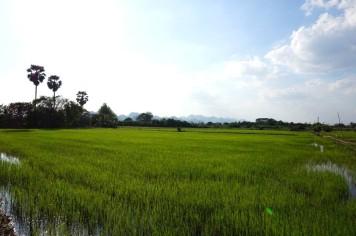 asie-thailande-kanchanaburi-33