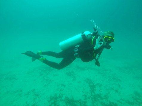 asie-thailande-koh-tao-plongee-46