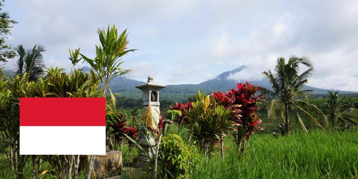 Indonésie, ce que l'on en retient