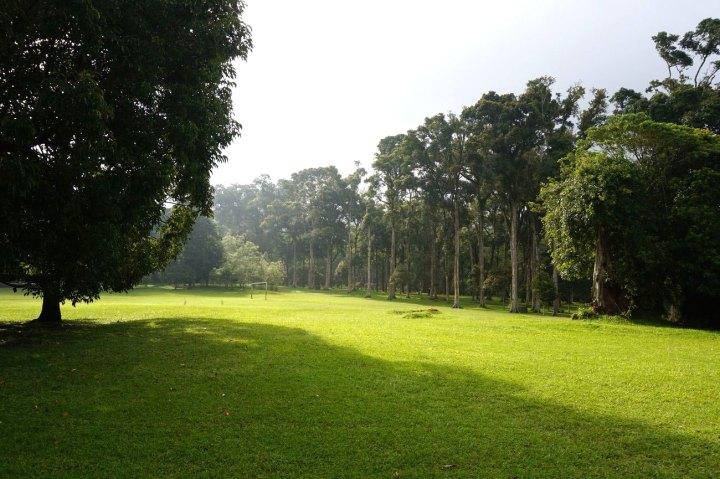 Asie-Indonesie-Bali-Bedugul-06.jpg