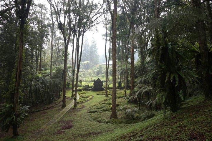 Asie-Indonesie-Bali-Bedugul-12.jpg