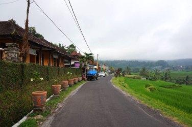 Asie-Indonesie-Bali-Jatiluwih-04