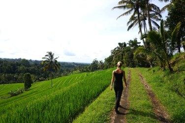 Asie-Indonesie-Bali-Jatiluwih-13