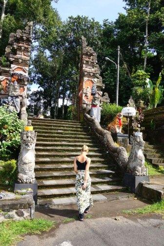 Asie-Indonesie-Bali-Jatiluwih-21