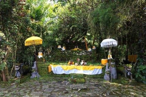 Asie-Indonesie-Bali-Jatiluwih-25