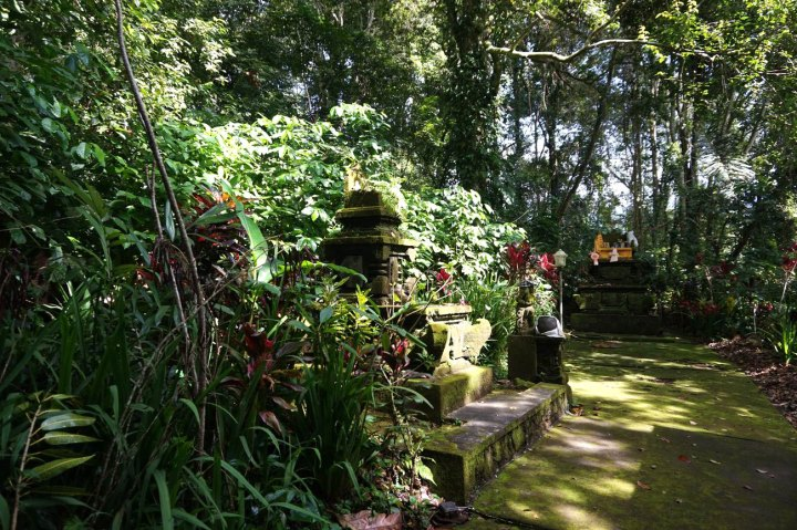 Asie-Indonesie-Bali-Jatiluwih-28