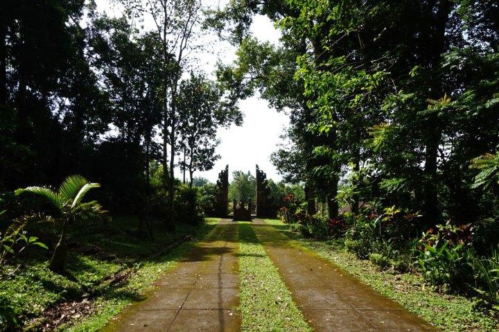 Asie-Indonesie-Bali-Jatiluwih-36