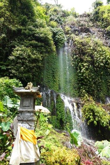 Asie-Indonesie-Bali-Munduk-08