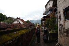 Asie-Indonesie-Bali-Munduk-32