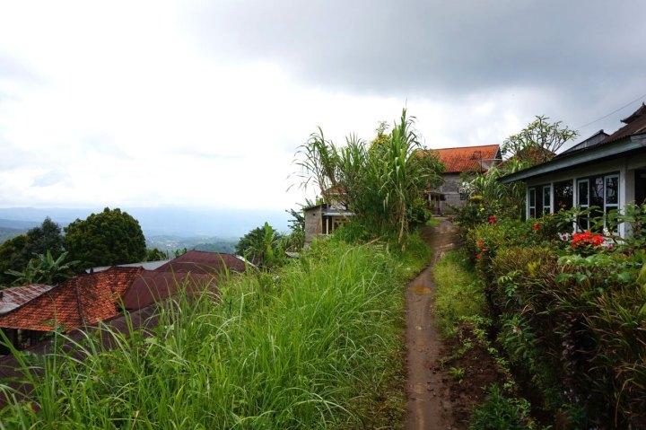 Asie-Indonesie-Bali-Munduk-36