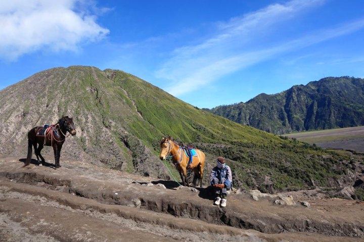 Asie-Indonesie-Mont-Bromo-Volcan-112