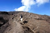 Asie-Indonesie-Mont-Bromo-Volcan-114