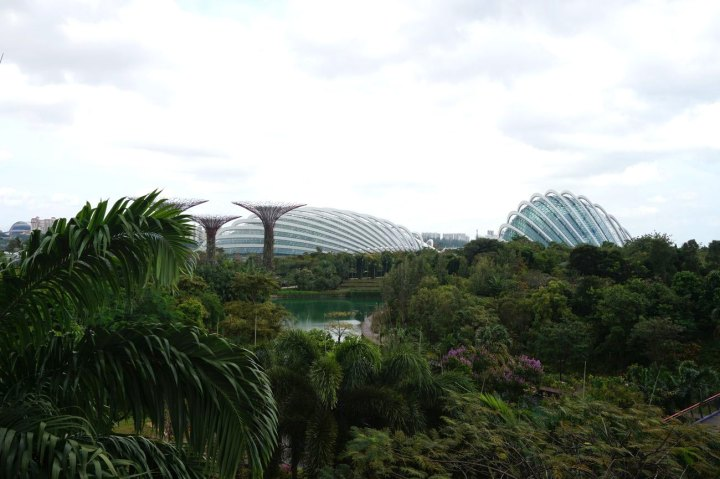 Asie-Singapour-89