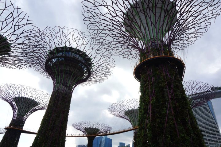 Asie-Singapour-96.jpg