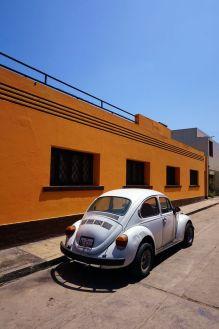 Amerique du sud-Perou-Lima 52