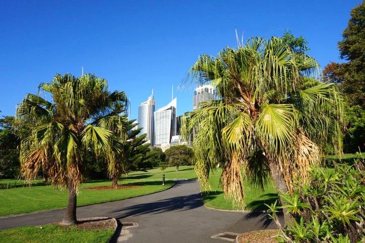 Australie-Sydney-52