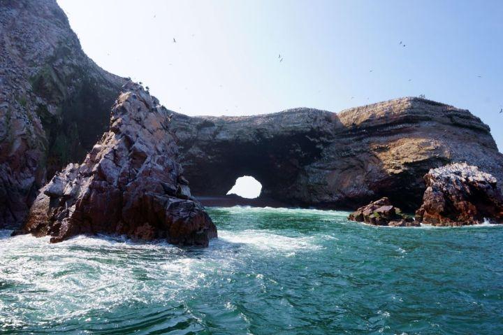 Pérou Paracas Islas Ballestas 23.JPG