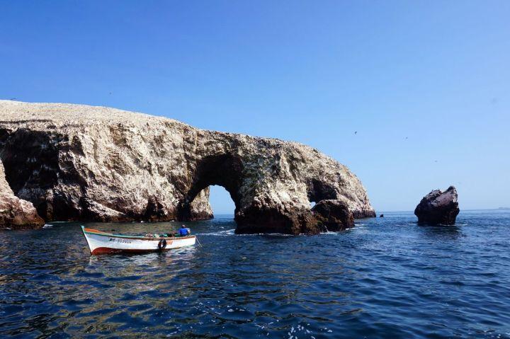 Pérou Paracas Islas Ballestas 38.JPG