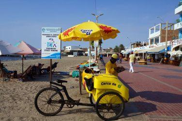 Pérou Paracas Islas Ballestas 39
