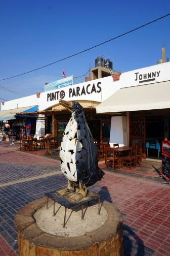 Pérou Paracas Islas Ballestas 42