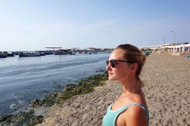 Pérou Paracas Islas Ballestas 46