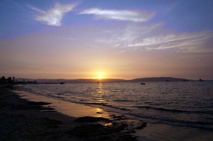 Pérou Paracas Islas Ballestas 53.JPG