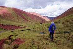 Pérou Rainbow Mountain Vinicunca 79
