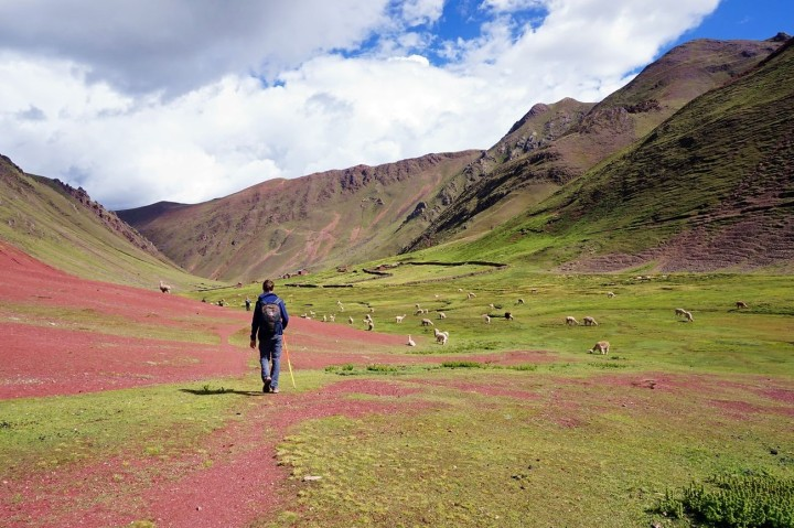 Pérou Rainbow Mountain Vinicunca 92