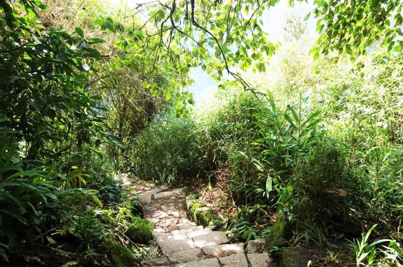 Perou Machu Picchu Aguas Calientes 07.JPG