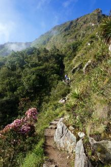 Perou Machu Picchu Montana 13