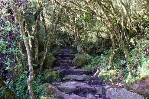 Perou Machu Picchu Montana 15