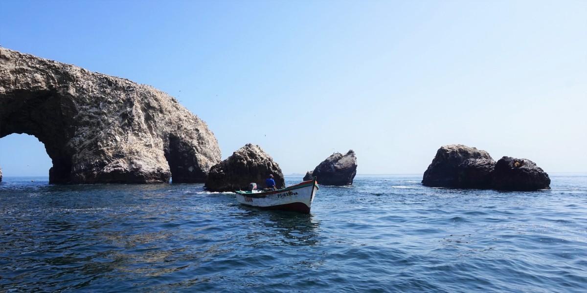 Paracas et les îles Ballestas, à la queue leuleu !