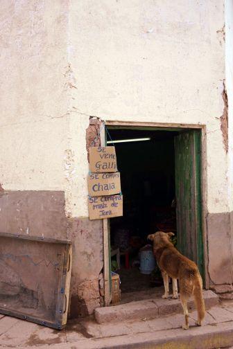 Perou Urubamba Salineras Maras 26