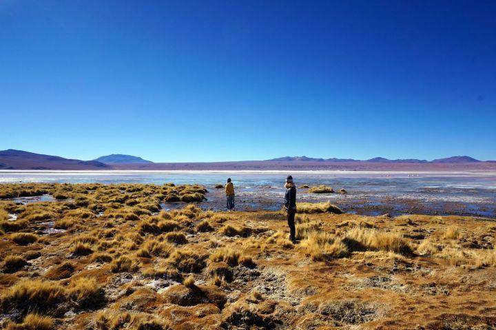 Bolivie Désert d'Uyuni 100